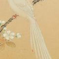 「四季花鳥図屏風(六曲一双)」
