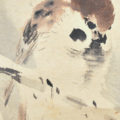 「積雪小禽図」