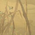 「葦に鯉図」