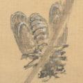 「花鳥図」