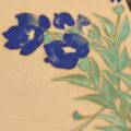 「花卉図」