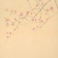 「紅梅鴛鴦図」
