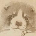 「狗子図」