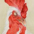 「梅花鶏図」