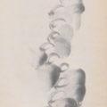 「雲水托鉢」
