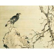 「枯木叭々鳥図」